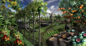 Organic Permaculture
